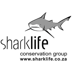 Sharklife South Africa